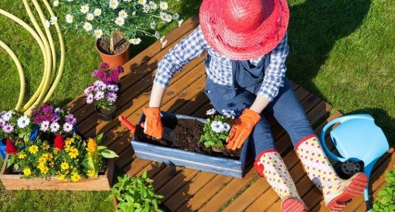 Ideas fáciles de paisajismo para el frente de su casa